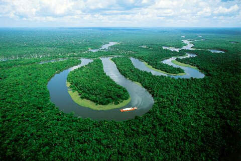 Amazon in Cruise from Iquitos